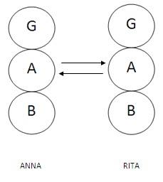 TRANSAZIONE COMPLEMENTARE 1